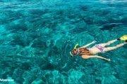 Sup Snorkeling Costiera Amalfitana